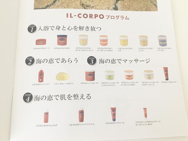 IL-CORPOプログラムの説明,パンフレット,
