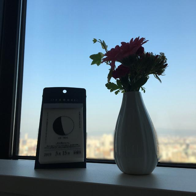 快晴の花が生けられている花瓶と並んで置かれている月と暦の日めくりカレンダー,
